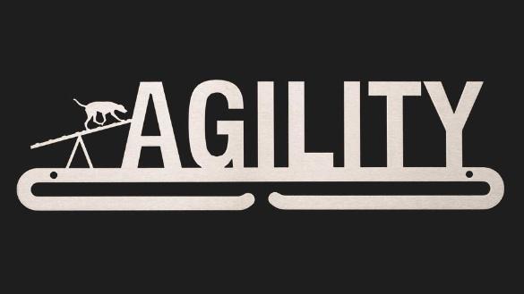 trendyhangers.nl-medaillehangers-agility-wip.jpg